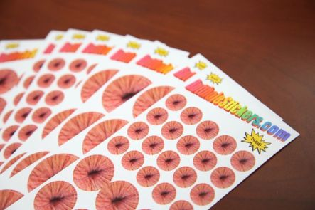 Butthole Stickers Fanned